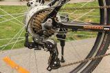 セリウム山の電気自転車(LWEB-L2603)