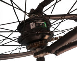 20 Zoll-Gebirgsfahrrad-/Aluminiumlegierung-Rahmen/Lithium-Batterie/elektrisches Fahrrad/Motorrad