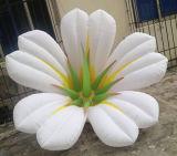 Pubblicità del fiore gonfiabile grande con il sistema chiaro del LED