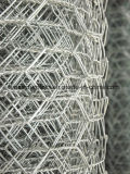 Galvano galvanisierte sechseckige Draht-Filetarbeit für Rahmen
