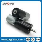 12V 24mm schwanzloses Gleichstrom-Bewegungsreduzierstück-Getriebe