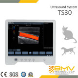 Touchscan 30イメージ投射診断装置