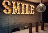 Kundenspezifische Metall angestrichene Glühlampe der Shell-Gehäuse-LED bezeichnet Zeichen mit Buchstaben