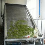 Secador vegetal de la correa de la deshidratación continua de la baja temperatura del vacío