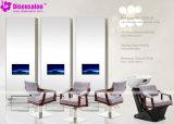 De populaire Stoel Van uitstekende kwaliteit van de Salon van de Stoel van de Kapper van de Spiegel van de Salon (P2011F)