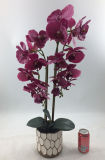 卸売の人工的な紫色の蘭は装飾を植える