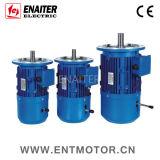 IECの標準高性能電気ACブレーキモーター