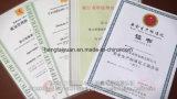 Matière première /Polyurethane d'unité centrale pour les santals uniques a-5005/B-5002 de /Ladies de chaussure