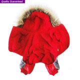 محبوب إمداد تموين ملابس من كلب شريكات مع يضمن نوعية