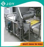 Wasmachine de van uitstekende kwaliteit van het Fruit
