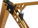 bicicleta de dobramento elétrica da fonte da fábrica 250W
