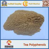 100% puro, polifenoli bianchi dell'estratto del tè 100%Nature
