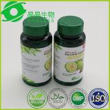 Garcinia Cambogia 과일 바디 아름다운 체중 감소 환약