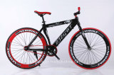 Vélo de montagne de carbone de bonne qualité de Chine (ly-a-55)