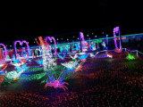 Luz de Natal ao ar livre da luz da cortina da decoração do feriado do diodo emissor de luz para a mostra clara