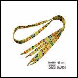 Modèle coloré frais courant de lacets de chaussure avec la diverse configuration et les couleurs solides