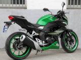 [رزم250ه-1ا] يتسابق درّاجة ناريّة [150كّ/200كّ/250كّ]