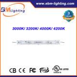 정직한 Hydroponic 설비 제조업자는 빛을 630 와트 밸러스트 장비 증가한다