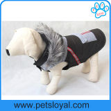冬の飼い犬はアクセサリ犬のジャケットに着せる