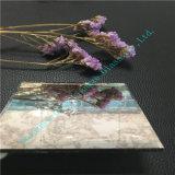 5mm het Antieke /Art van de Spiegel Glas van de Spiegel met Uitstekende kwaliteit voor Decoratie