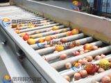 (OG-606) Máquina de la cosecha de la clasificadora de la patata y de la cebolla, del vehículo y de la fruta