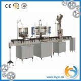 Chaîne de production remplissante de l'eau minérale de série de Xgf