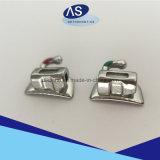 Segundos tubos bucales molares 2g de la ortodoncia