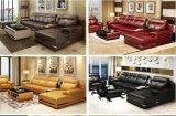 ホーム居間の家具現代セクションコーナーの革ソファー(HX-SN060)