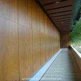 Компакт деревянного цвета зерна внешний феноловый для провентилированных фасадов