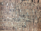 부대, 단화, 훈장을%s 새로운 패턴 목제 곡물 가짜 합성 가죽, (HS-Y56)