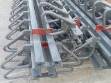 Junção de expansão modular de China para a ponte vendida a India