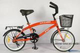 Bicicleta do cruzador da praia dos miúdos