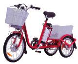 Triciclo eléctrico (XFT-002)