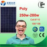 poli comitato solare di qualità poco costosa 250W in azione