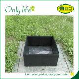 Vert-foncé végétaux de PE mobile d'Onlylife élèvent le sac aucuns traitements