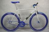 """"""" vélo simple de la route 700C (TMROAD-FG05)"""