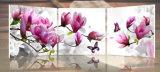 3部分の自由な出荷熱い販売法の現代壁絵画紫色のピンクの青い花のホームキャンバスの装飾的な芸術映像のペンキはMc177を印刷する