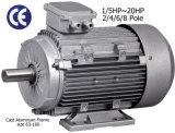 Aluフレーム3-Phase ACモーター(2.2kW/415V/50Hz/8棒)