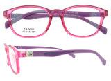 플라스틱 광학 프레임이 형식에 의하여 Eyewear Eyewear 프레임 Tr90 농담을 한다