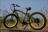 高品質浜の脂肪質のタイヤEのバイク