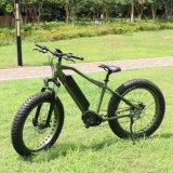 매우 48V 1000W Bafang 뚱뚱한 타이어를 가진 중앙 드라이브 시스템 컬러 화면 출력 장치 전기 자전거