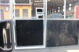 이용된 안정되어 있는 장비 휴대용 말 안정되어 있는 임시 안정되어 있는 말 안정
