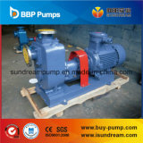La grande pompe ISO9001 d'eau propre de flux du ZW a certifié