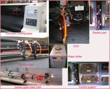Tagliatrice automobilistica del laser della coperta del piede del rilievo delle lane Tshy160100
