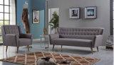 Sofá moderno de la sala de estar de Europa de la tela más nueva del norte de los diseños (HC102)