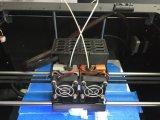 Impresora de Fdm 3D con los materiales respetuosos del medio ambiente