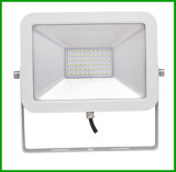 Sales caldo LED Flood Light 10W