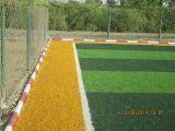 Gioco del calcio Artificial Grass per Training Field