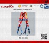 TSH01 037safetyは利用する(EN361&EN358)