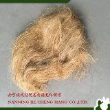 Fibra corta del sisal/fibra del cáñamo para el papel/la toalla/el edificio de la colada